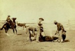 Cattle Branding in 1888